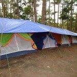 These are the tents!