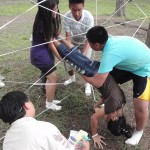 Spider web the game
